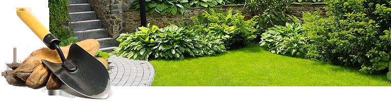 lawn-maintain